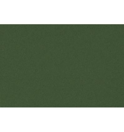 Cartone per passepartout Verde Salvia cm 80x120